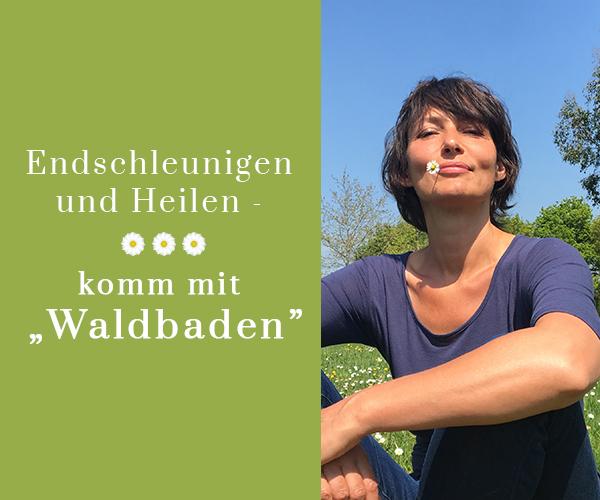 """Endschleunigen und Heilen – komm mit """"Waldbaden"""""""